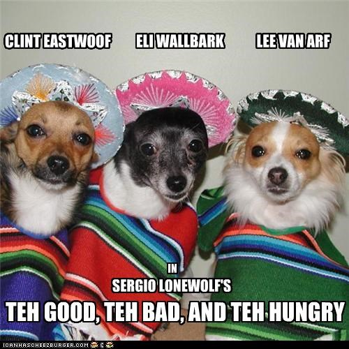 chihuahua Clint Eastwood Movie puns silly robes The Bad The Good the hungry the ugly western - 3836773376