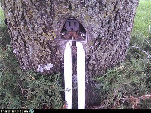 electrical outlet going green tree - 3838010368