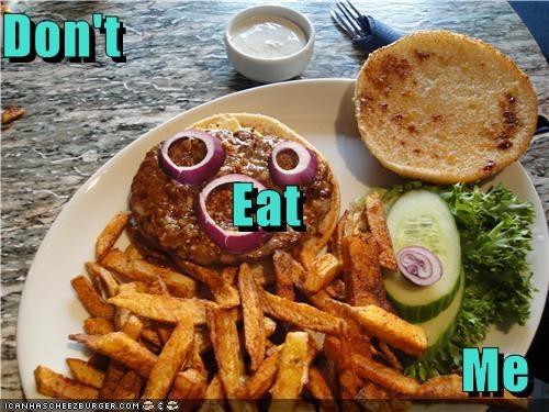 Cheezburger Image 3838256896