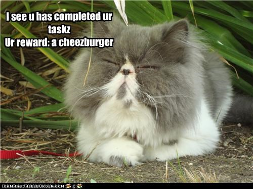 Cheezburger Image 3839352832