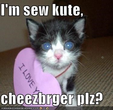 Cheezburger Image 3839383296