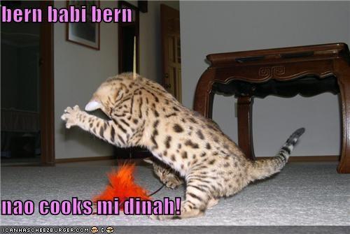 Cheezburger Image 3841157888