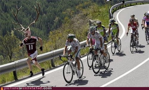 antlers bicyclists deerman runner wtf - 3842452480