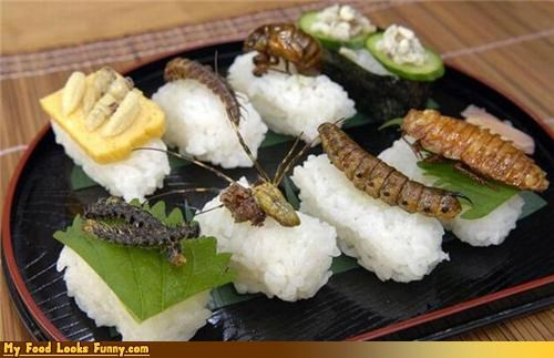 bizarre bugs gross protein rice sushi - 3843534592