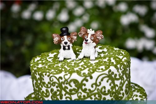 cute doggy cake toppers,cute wedding cake topper,dog cake toppers,dog cake toppers made of fondant,doggy bride,doggy groom,Dreamcake,fondant,fondant cake toppers,funny cake toppers,funny wedding photos,were-in-love,Wedding Themes