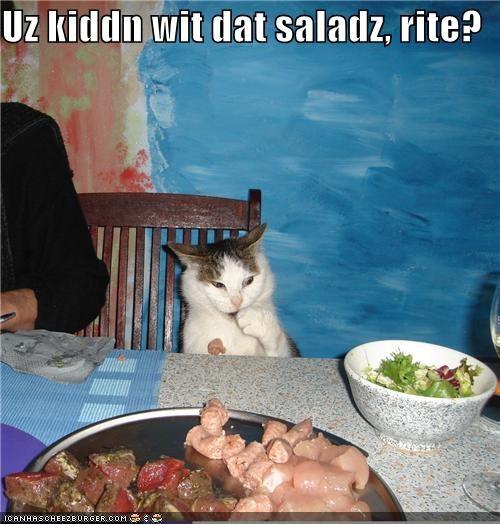 Cheezburger Image 3844017152