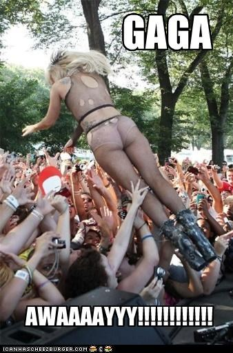 celebrity-pictures-gaga-lollapalooza,lolz