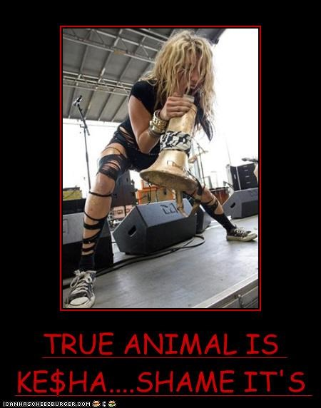 TRUE ANIMAL IS KE$HA....SHAME IT'S AN ELEPHANT WALRUS!
