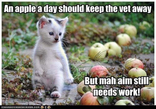 An apple a day should keep the vet away But mah aim still needs work!