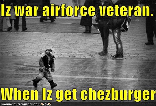 Cheezburger Image 3846518784
