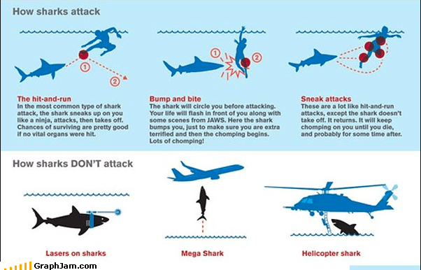 animal educational infographic jaws ocean sharks