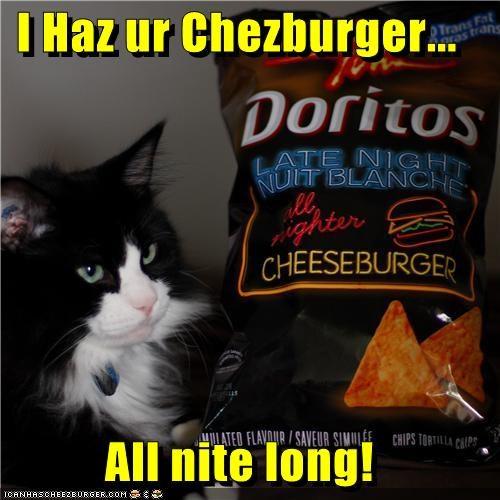 Cheezburger Image 3847279360