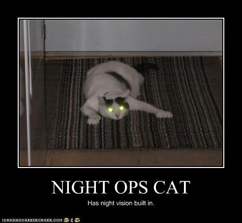 caption,cat,glowing,night ops,night vision