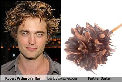 feather duster,robert pattinsons hair