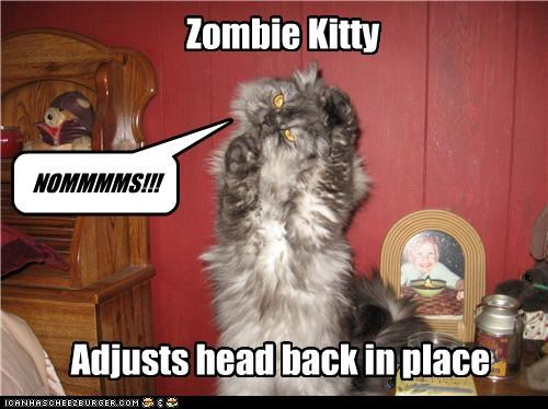 adjust,adjusting,back,caption,captioned,cat,fixing,head,noms,place,zombie