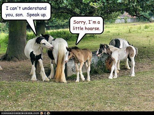 cant-understand,caption,captioned,Command,hoarse,homophone,horse,parents,speak up