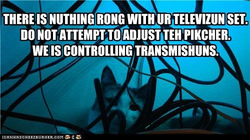 adjust,attempt,caption,captioned,cat,controlling,do not,nothing,picture,television,transmissions,TV,wrong