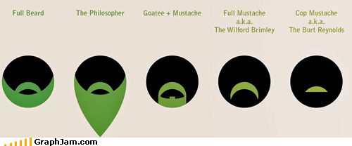 beards facial hair infographic - 3848795904