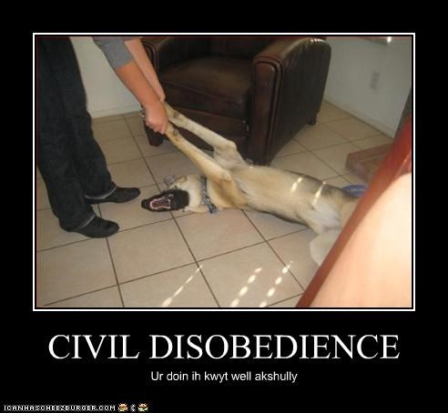 CIVIL DISOBEDIENCE Ur doin ih kwyt well akshully