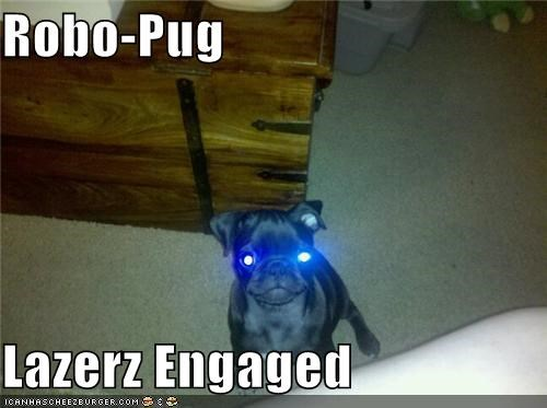 dangerous,evil,lasers,pug,robo-pug