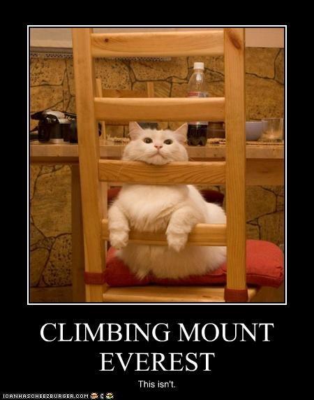 CLIMBING MOUNT EVEREST This isn't.
