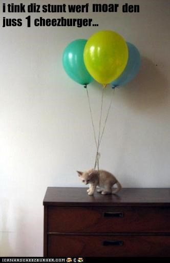 Balloons,caption,kitten,payment,stunt