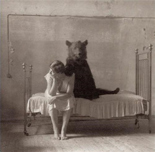 bears,bed,bestiality,Sad,wtf