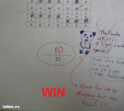 failboat g rated math is too hard panda school studying teachers tests win - 3850243584