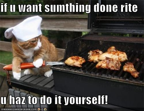 bbq caption cat cooking do it yourself - 3852501504