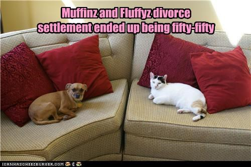 Muffinz and Fluffyz divorce settlement ended up being fifty-fifty