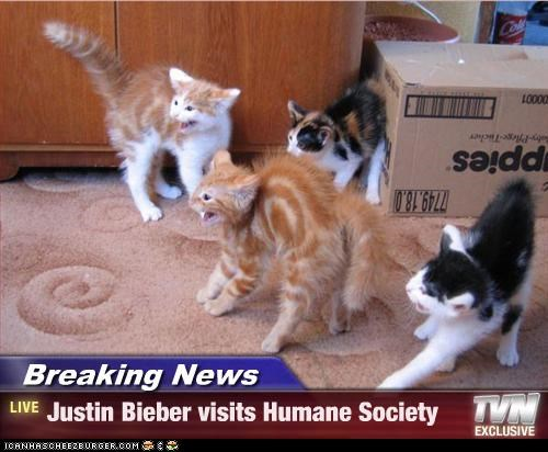 Breaking News caption Hall of Fame humane society justin bieber outrage