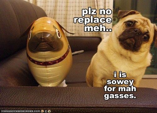 balloon Hall of Fame pug replacement sorry - 3853413376