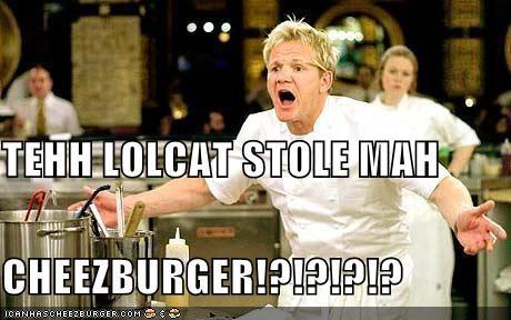 Cheezburger Image 3855064320