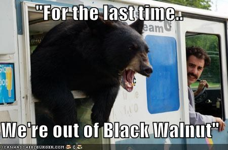actor animals bear celeb funny - 3855830016