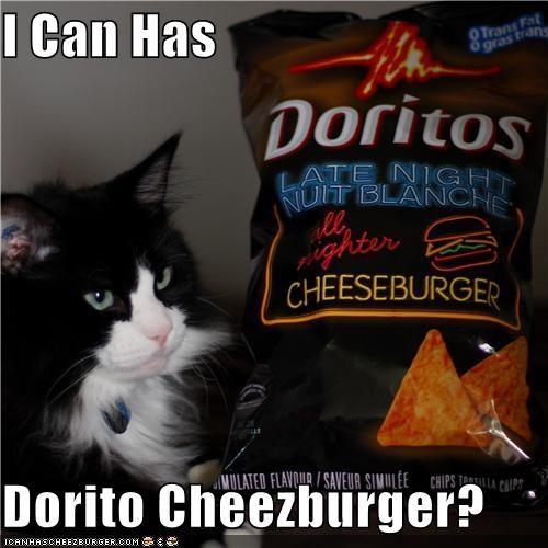 Cheezburger Image 3855875584