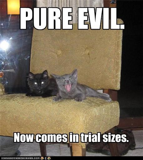 caption kitten pure evil trial sizes - 3857642240