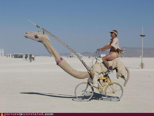 bicycle camel creepy fast wtf