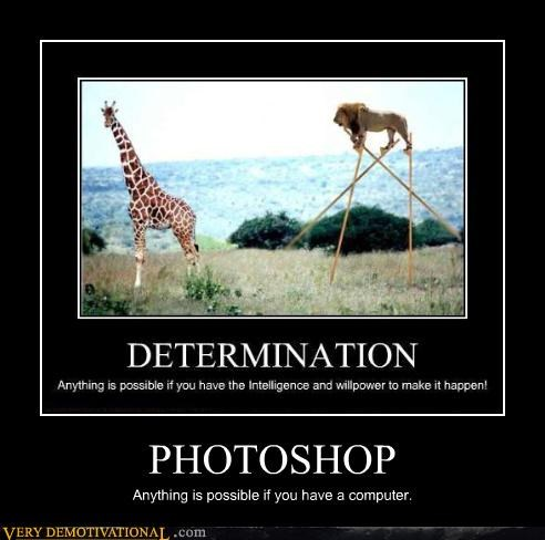 photoshop,determination,stilts,lion