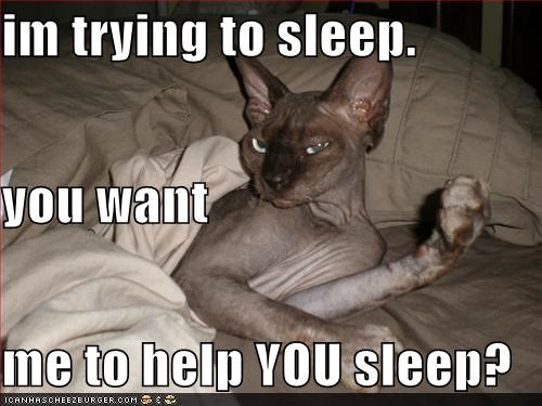 im trying to sleep.  you want me to help YOU sleep?