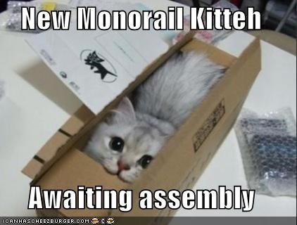 assembly,box,caption,kitten,monorail kitty,waiting
