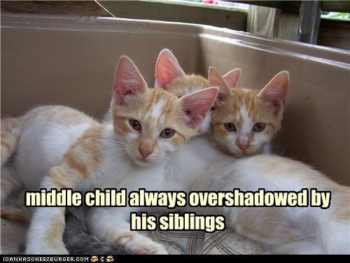 caption Cats middle child overshadowed siblings