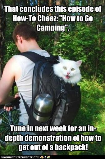 "That concludes this episode of How-To Cheez: ""How to Go Camping"". Tune in next week for an in-depth demonstration of how to get out of a backpack!"