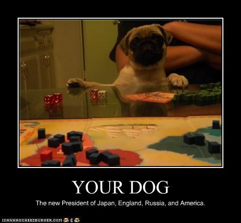 YOUR DOG The new President of Japan, England, Russia, and America.