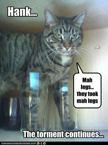 Hank... The torment continues... Mah legs... they took mah legs