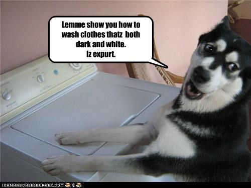 Lemme show you how to wash clothes thatz both dark and white. Iz expurt.