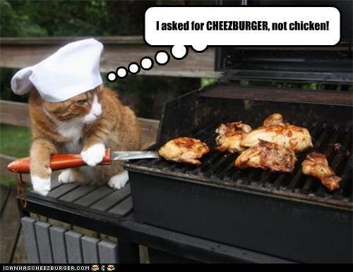 Cheezburger Image 3866500352