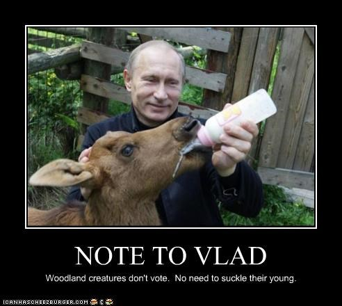 animals cute feeding milk overkill russia suckle Vladimir Putin vladurday votes wtf - 3868302080