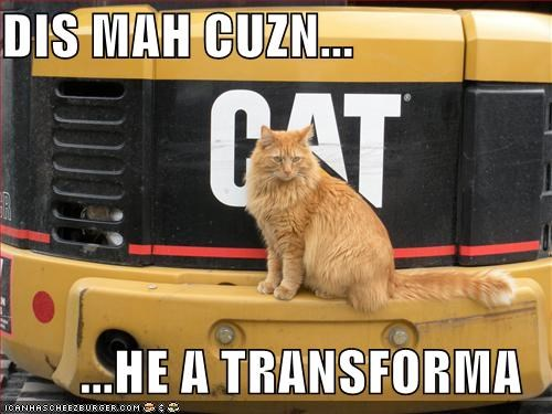 caption cat construction cousin machinery transformer
