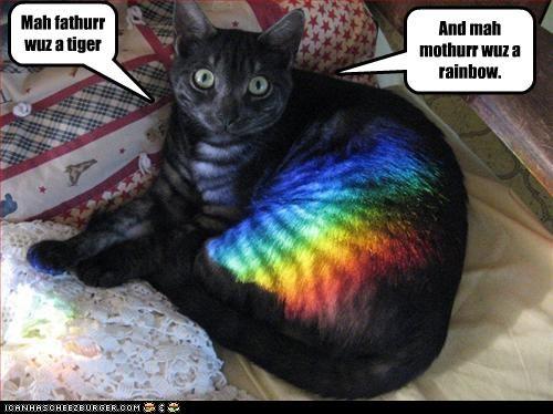 Mah fathurr wuz a tiger And mah mothurr wuz a rainbow.