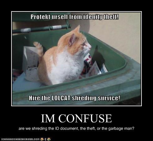 IM CONFUSE are we shreding the ID document, the theft, or the garbage man?